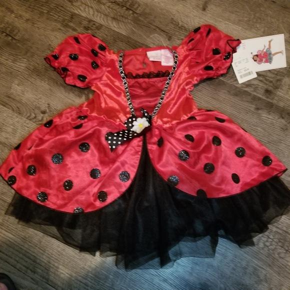 Other - Halloween Costumes Little Ladybug 5T NWT